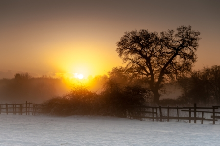 Sunrise over a snowy field